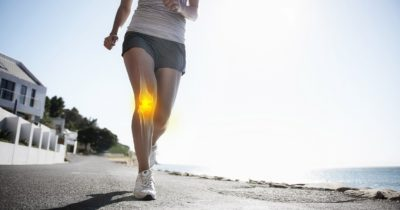 Cartilage in knee joint highlighted in runner